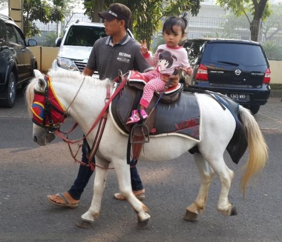 Sarah naik kuda pertama kali.. mamanya lom pernah takut kudanya encok :p
